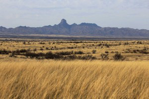Arizona Dude Ranches - AZDRA Ranch Locations